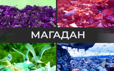 Магадан утопает в мусоре. Власть бездействует